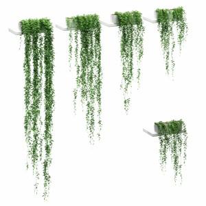 Hanging Plants In Pots On The Shelves - 5 Models