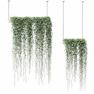 Plants In Hanging Flower Pots. 2 Models
