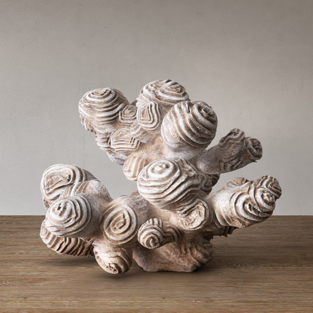Author Sculpture Coral 3d Model For Vray
