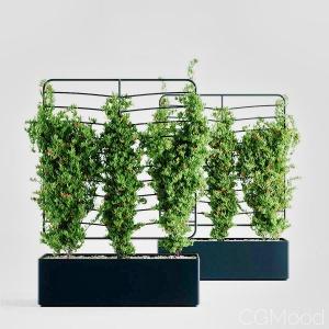 Helen Kontouris – Botanical Planter Screens