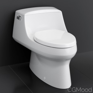 "Kohler ""san Raphael"" Toilet"