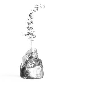 Glass Skull Flowerpot