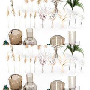 Decorative Set No3 (10 Vases - 20 Plants) Vray and Corona