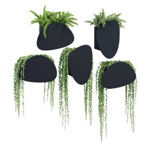 Pavo Planters