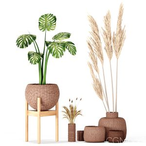 Set Vases-no3- Wicker Vase