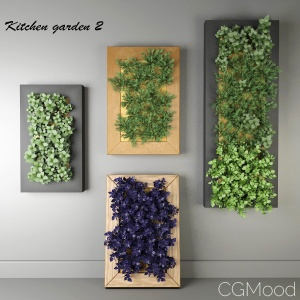 Kitchen herbs # 2