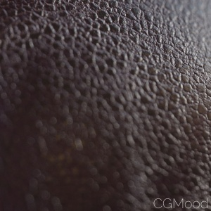 Procedural Leather for FStormRender