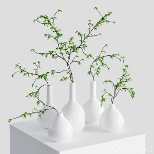 The Branches In The Vases