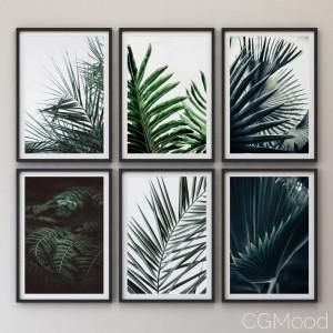 Tropical Set-01 Framed