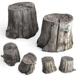 Photoscan Of Two Stumps