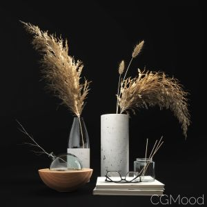 Decorative Set With Dry Plants 01