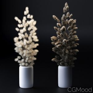 Bouquet Of Dried Flowers. 2 Models