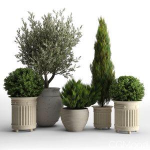 Prescott Planter Set