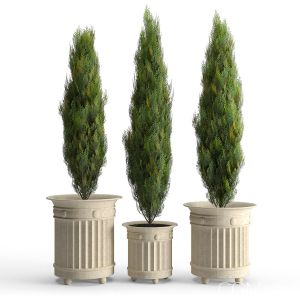 Prescott Planter White Cedar