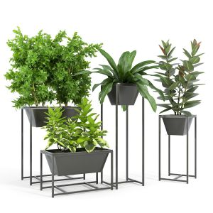 Stand Planter 2