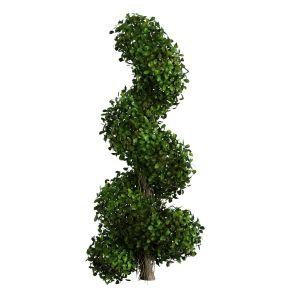 Money Banyan