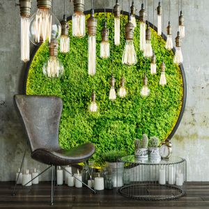 Decor Set With Moss And Lamps