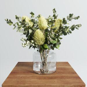 Banksia Serrata Set