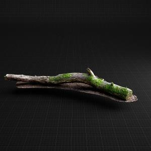 Mossy branch_01