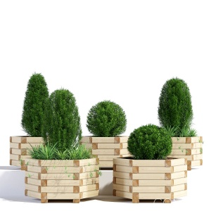 Wooden Hexagonal Planter
