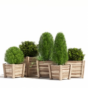 Tapered Cube Acacia Hardwood Planters