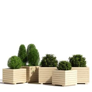 Wooden Pine Cube Planter