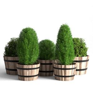 Acacia Hardwood Round Planter