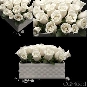 White Rose Flowerbox