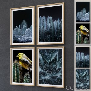 JUNIQE Cactus framed set-02