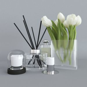 Set With White Tulips