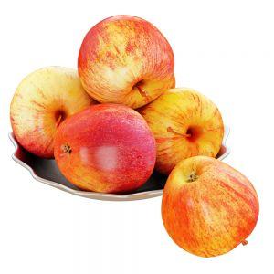 Apples in a Metal Plate