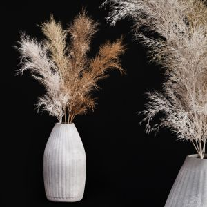 Decoration Set 03 Pampas