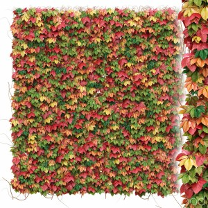 Decorative Wall Of Autumn Grape Leaves