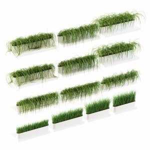 Grass For The Shelves. 13 V2 Models