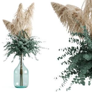 Cortaderia Selloana And Eucalyptus In Bottle