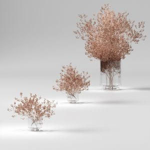 Dry Plants Set. 3 Models